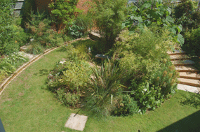 Garden layout photograph for comparison  with plan and sketch by garden designer Hampshire Martyn Gingell